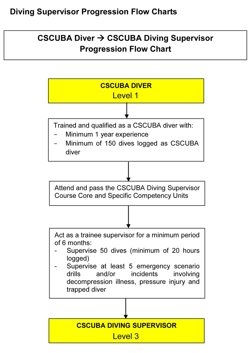 Commercial Diving Supervisor Progression Flow Chart
